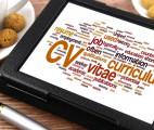 curriculum-vitae, video curriculum, que es curriculum, como es