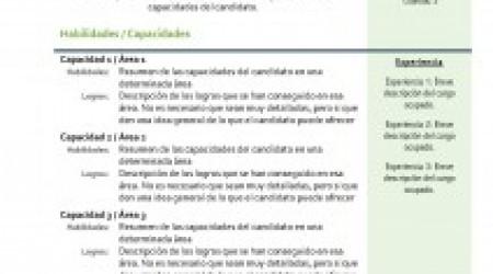curriculum-vitae-combinado-02
