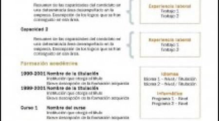Modelo de Curriculum combinado 1
