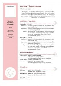 curriculum-vitae-funcional-02